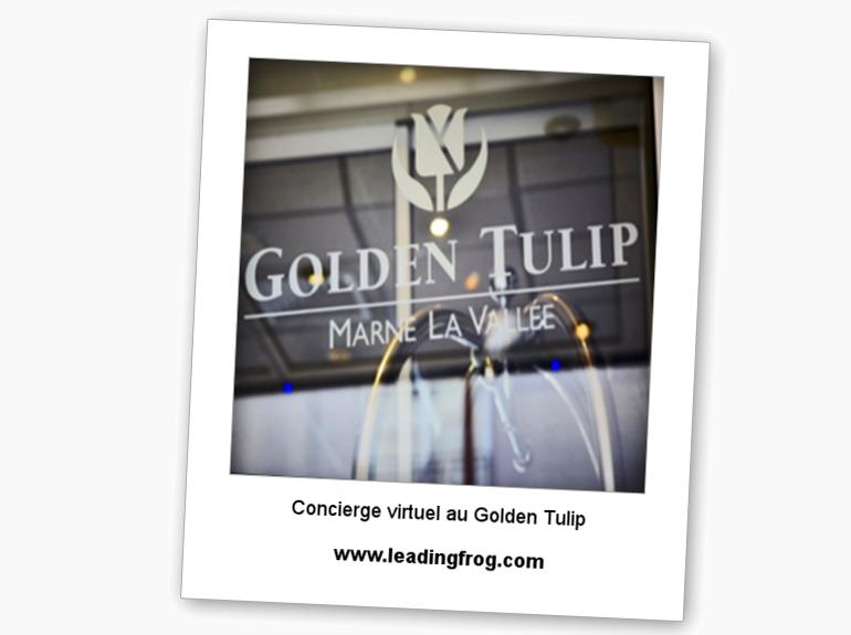 golden tulip2